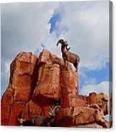 Big Thunder Bighorns Canvas Print