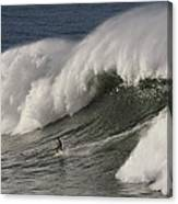 Big Wave II Canvas Print