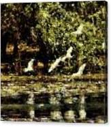 Billabong V9 Canvas Print