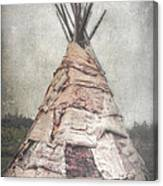 Birch Teepee Canvas Print