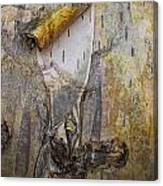 Birch Tree Bark No.0889 Canvas Print