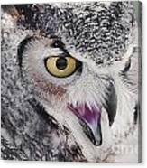 Bird 4 Canvas Print