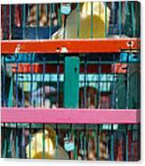 Bird Of Luck Pajaro De La Suerte Canvas Print