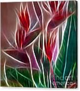 Bird Of Paradise Fractal Panel 2 Canvas Print