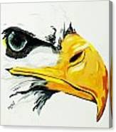 Bird Of Prey  Eagle Canvas Print