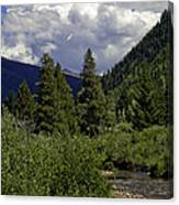 Bird Over Vail 1 Canvas Print