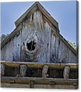Birdhouse In Cambria Canvas Print