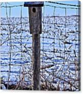 Birdhouse In The Snow Canvas Print
