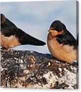 Birding Canvas Print