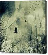 Birds In Flight Against A Dark Sky Canvas Print