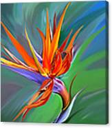 Birds Of Paradise 1 Canvas Print