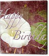 Birthday Greeting Card - Bindweed Morning Glory Canvas Print
