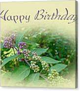 Birthday Greeting Card - American Beautyberry Shrub Canvas Print