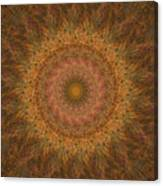Birthing Mandala 18 Canvas Print