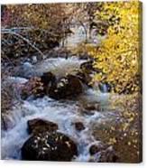 Bishop Creek-2 Canvas Print