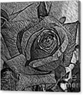 Black And White Rose Sketch Canvas Print