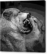 Black And White Wolf Fight Canvas Print