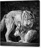 Black And White Wolves Canvas Print