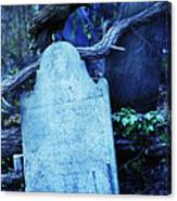 Black Bird Perched On Old Tombstone Canvas Print