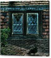Black Birds Sitting On Roof By Window Canvas Print