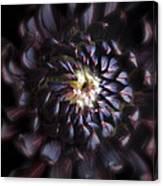 Black Purple Dahlia - Flower Photograph Canvas Print
