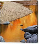 Black River Reflections At Johnsons Shut Ins State Park I Canvas Print