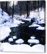 Black River Winter Scenic Canvas Print