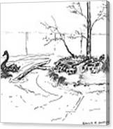 Black Swan And Sliders Canvas Print