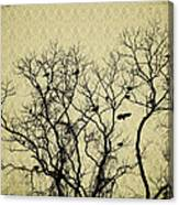 Blackbirds Roost Canvas Print