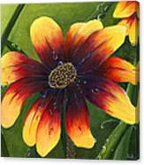 Blanket Flower Canvas Print