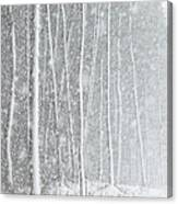 Blizzard Blankets Trees In Snow Canvas Print