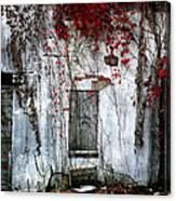 Blood Ivy Canvas Print