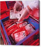 Blood Storage Canvas Print