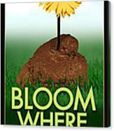Bloom Where You Are Planted Poster Canvas Print
