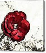 Blotted Rose Canvas Print