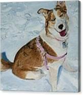 Blue - Siberian Husky Dog Painting Canvas Print