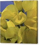 Blue And Yellow Canvas Print