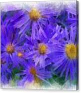 Blue Asters - Watercolor Canvas Print