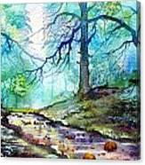 Blue Beck Canvas Print