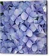 Blue Cluster Canvas Print