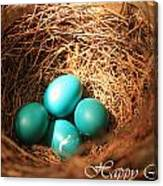 Blue Eggs In Nest Canvas Print
