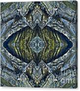 Blue Eye Canvas Print