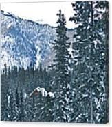 Blue Green Mountain Canvas Print