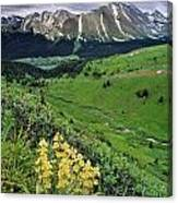 Blue Grouse Pass, Willmore Wilderness Canvas Print