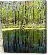 Blue Hole Springs Florida Canvas Print