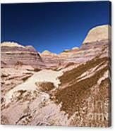 Blue Mesa Landscape Canvas Print