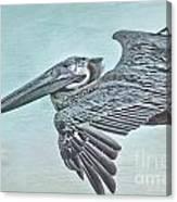 Blue Pelican Canvas Print
