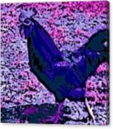 Blue Rooster Canvas Print