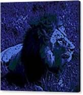 Blue Simba Canvas Print