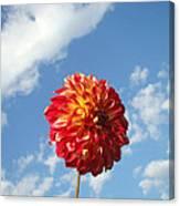 Blue Sky White Clouds Floral Art Prints Dahlia Flowers Canvas Print